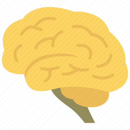 brain, neuroscience, neurosurgery icon