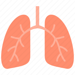 breathe, lung, lungs, pulmonology icon