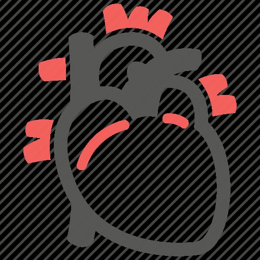 cardiogram, cardiology, cardiovascular, heart icon