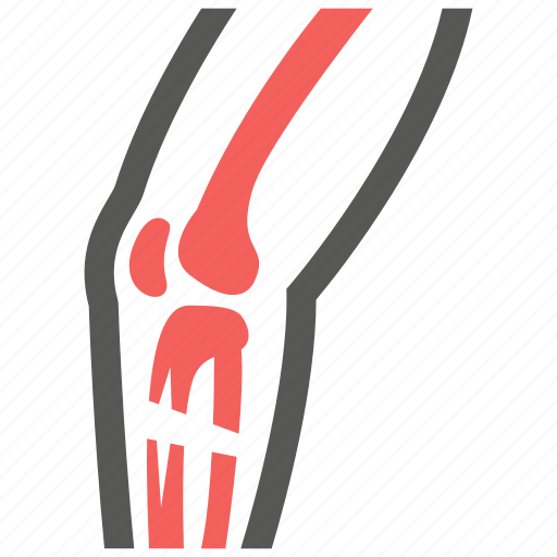 bone, broken, human, injury, leg, orthopedic, orthopedics icon