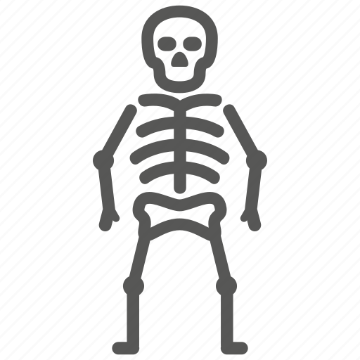 bone, death, osteology, skeleton, skull icon