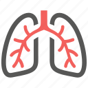 anatomy, breath, lungs, organ, pulmonology icon