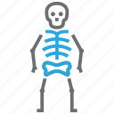 bone, osteology, skeleton, skull icon