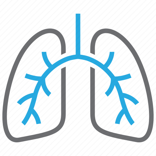 breathe, lungs, pulmonology icon