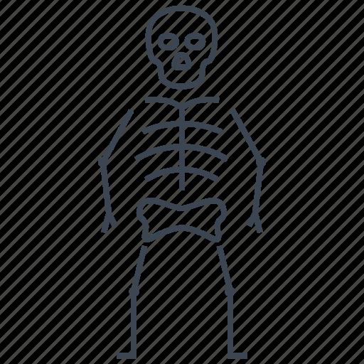 bones, osteology, skeleton icon
