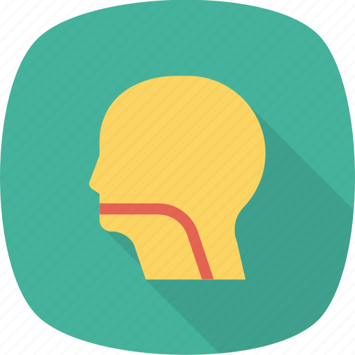 brain, face, head, human, patient, profile icon