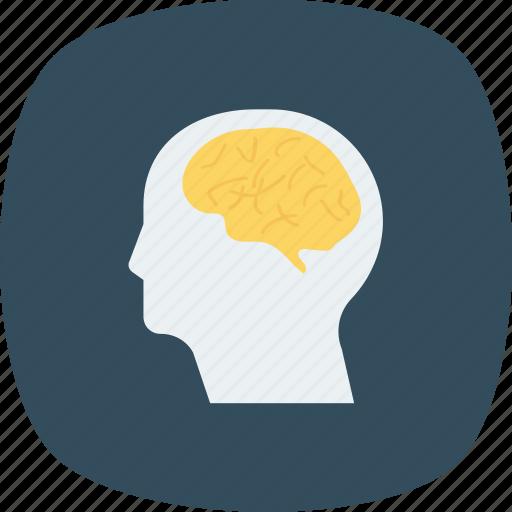 brain, head, human, neurology icon