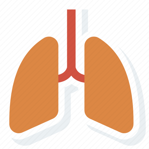 breath, care, health, lung, lungs, medical, organs icon