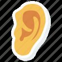 ear, human, listen, medical, sound