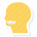 face, health, medical, surgery, teeth, treatment icon