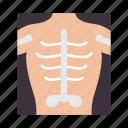 hospital, radiology, xray icon