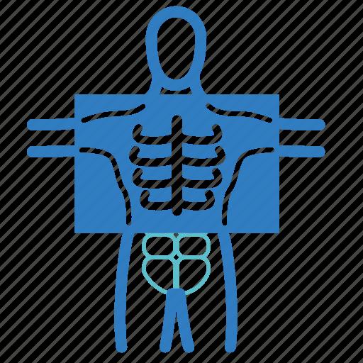 diagnosis, human body, medical, patient, radiology, x-ray, xray icon