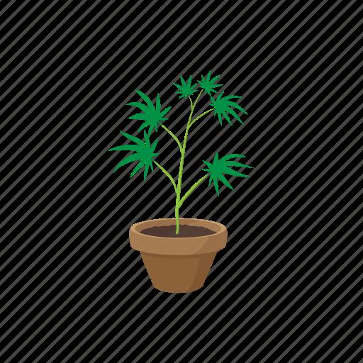 cannabis, drug, green, growing, marijuana, plant, pot icon