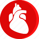 anatomy, body, heart, human, organ, part, parts icon