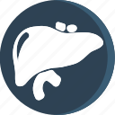 anatomy, body, health, human, lungs, part, parts icon