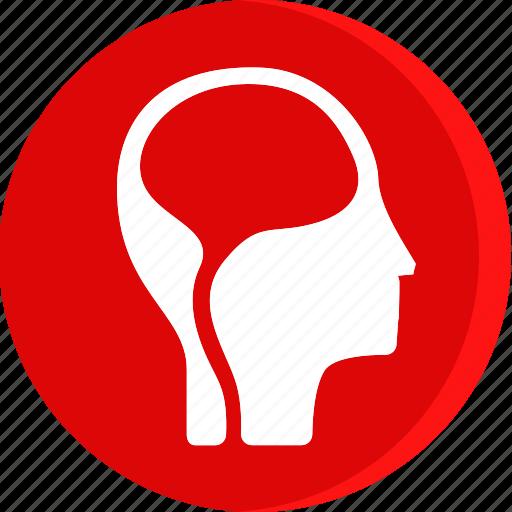 anatomy, body, brain, health, human, part, parts icon