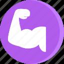 anatomy, body, human, arm, bycep, male, muscle