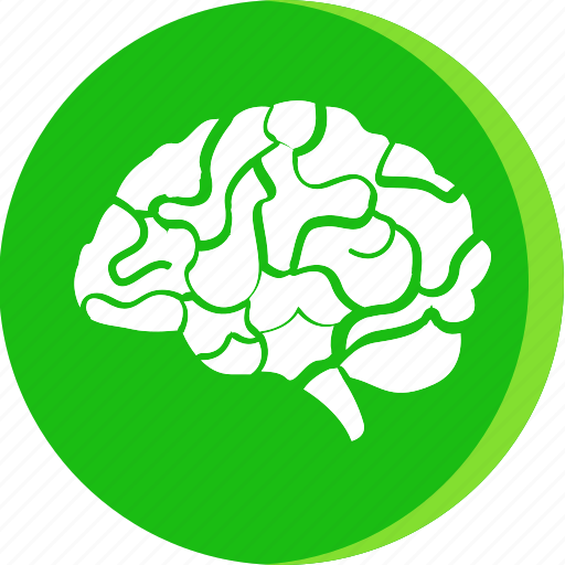 anatomy, body, brain, head, human, part, parts icon