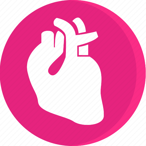 anatomy, body, health, human, part, parts icon