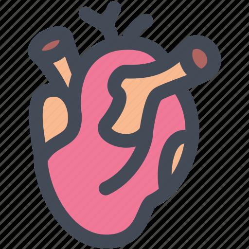 cardio, heart, heart rate, heartbeat, internal, medical, organs icon