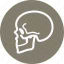 osteology, skeleton, skull icon