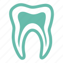 dental treatment, oral health, stomatology, teeth