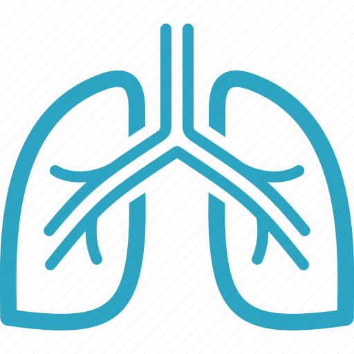 anatomy, breath, lungs, pulmonology icon