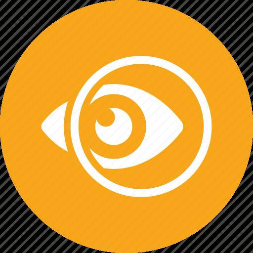 Eye care, eyesight, ophthalmology icon - Download on Iconfinder