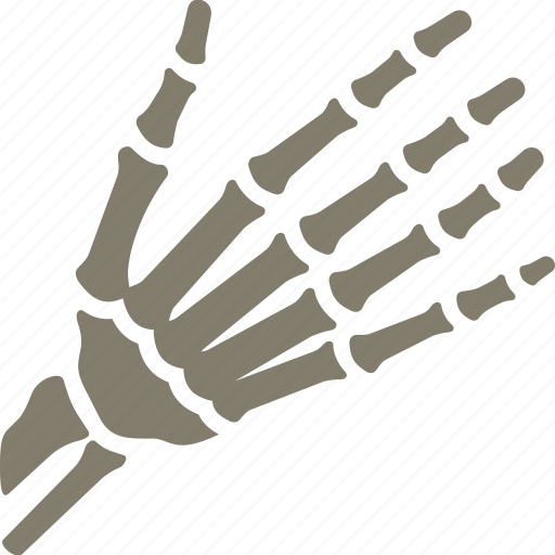 bones, hand, osteology, skeleton icon