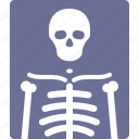 patient, radiography, radiology, xray icon