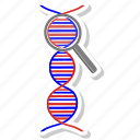 dna, health, healthy, medical, search