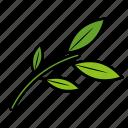 green, healing, leaf icon