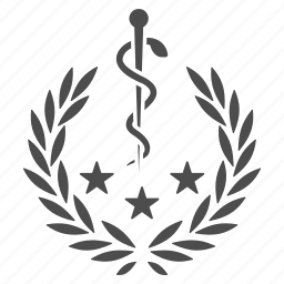 badge, certificate, healthcare, medical emblem, medicine, quality, reward icon