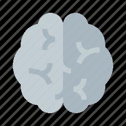 brain, cerebral, gyrus, head, idea, medical, psychology icon