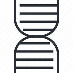 care, dna, genes, health, line, medicine, thin icon