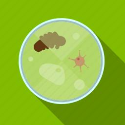 loupe, medicine, microorganisms, microscope, zoom icon