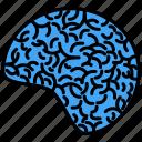anatomy, brain, head, health, hospital, medicine, physic icon