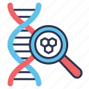 search, genetics, biology, genome, dna, magnifier, test