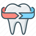 tooth, dentistry, stomatology