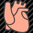 cardio, cardiology, heart, human organ, medical, medicine icon