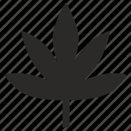 canabis, drug, med, medicine, plant icon