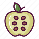 apple, diet, food, fruit, healthy, vegetable, vitamin icon