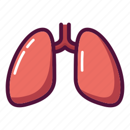 anatomy, chest, lungs, medicine, organ, tuberculosis, xray icon