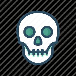 anatomy, bone, bones, death, halloween, human, skull icon