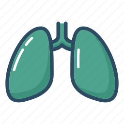 anatomy, breathing, lung, lungs, organ, tuberculosis, xray icon