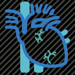 cardiac muscle, cardiology, cardiovascular, ekg, health, heart, human organ icon