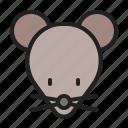 animal, mammals, mice, mouse, rat