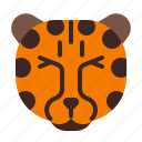 animal, cheetah, fast, mammals, wild icon