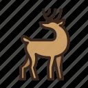 animal, christmas, deer, horns, merry christmas, new year, reindeer