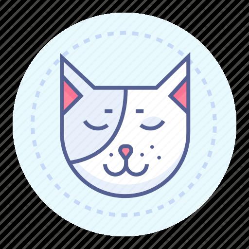 cat, pet, quiet, sleeping icon